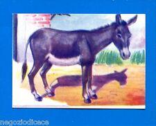 ANIMALI - Lampo 1964 - Figurina-Sticker n. 157 - ASINO -New