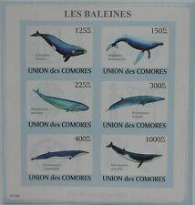 Whales Marine Life sea mammals Comoros Comores m/s Mi.2121-26 #CM9119a IMPERF