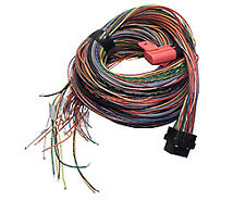 Link 5m long Combo  'A'+'B' loom to suit G4 and G4+ ECUs   #5LA and #5LB