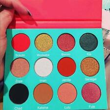 Pro 12 Colors Shimmer Eye Shadow Eyeshadow Palette Makeup Powder Flexibility New