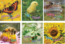 Life Cycles Sunflower,Acorn Tree,Bee,Frog,Chicken,Butterfly (pb) 6 Bk Set NEW