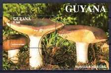Champignons Guyane (12) bloc oblitéré