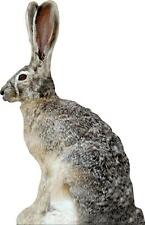 NEW Extreme Phantom HD Jack Rabbit Decoy PD-513 HD Series Coyote Varmit Predator