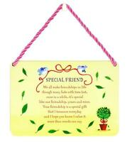Special Friend Tin Hanging Plaque Gift Idea