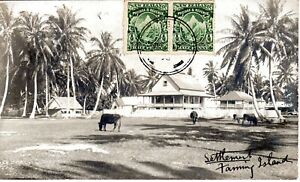 ~1910's FANNING ISLAND TABUAERON KIRIBATI - RPPC - Settlement and Cows on Island