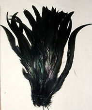 """25 BLACK Rooster Tail Feathers 10-12"""" Strung FREE SHIPPING w/in USA"""