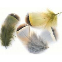 French Partridge Hackles for fly tying, 6 colours available, Barred Feathers
