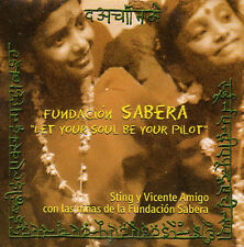 ★☆★ CD SINGLE STING & Vicente AMIGO Let your soul be the pilot - Promo 1-tr  ★☆★