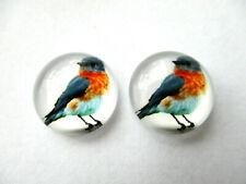 ROBIN BIRD CABOCHON GLASS STUD EARRINGS 12MM