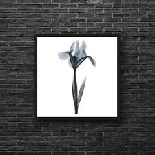 Whimsical Modern Blue Lily Flower Counted Cross Stitch Pattern