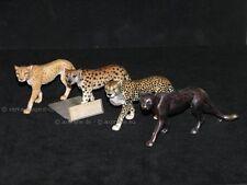 + Goebel Serengeti 4x Gepard. 1x Archiv Malmuster 3x Prototype (RAR), EINMALIG!
