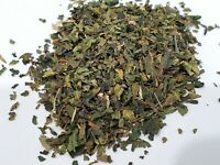 Stinging Nettle Leaf Tea (Urtica Dioica) Organic (From USA) + 1 Gram of SEEDS
