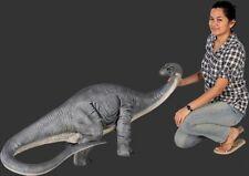 Apatosaurus dinosaur baby