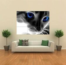 LIGHT CAT EYES BLUE NEW GIANT POSTER WALL ART PRINT PICTURE G152