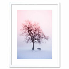 Photo Landscape Winter Snow Foggy Sunrise Tree Bench Framed Print 12x16 Inch