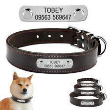 Engraved Customized Pet Dog Collars for Labrador Retriever Beagle Terrier