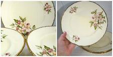 SET 6 dinner plates BLOSSOMTIME Royal Swan Staffordshire England Fine china