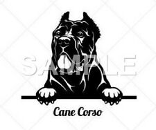 Cane Corso Decal Sticker Car Truck Window Vinyl (any color)