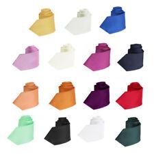 Cravates multicolores en microfibre pour homme