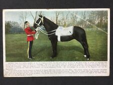 Vintage PC: Military: #M390: Jeannie, Old Drum Horse 7th Dragoon: A & G Taylor
