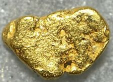 Beautiful Alaskan Natural Placer Gold Nugget .192 grams Free Shipping! #D782