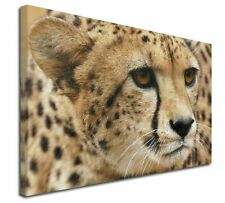 """Cheetah 30""""x20"""" Wall Art Canvas, Extra Large Picture Print Decor, AT-36-C3020"""