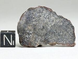 Meteorite NWA 13636 - Eucrite unbrecciated Achondrite polished Full Slice 6.20g
