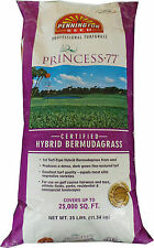 Princess 77 Bermuda Grass Seed 1/4 Lb. Sample Packet