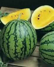 SANDIA AMARILLA  yellow  watermelon 100 semillas seeds