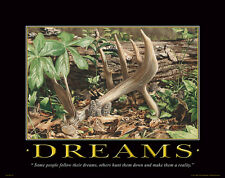 Whitetail Deer Motivational Poster Art Deer Antlers Sheds Morel Mushrooms MVP156