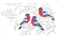 Rusia 1976 greetings postcard drawn birds