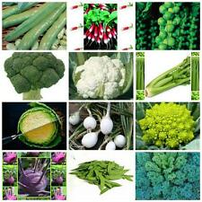 VEGETABLE SEEDS Autumn winter FOR COLD FROST PRONE AREAS 12 PACKS