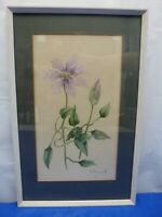 Original Framed Watercolour of Purple Flower with Leaves Signed D Cannell