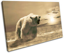 Polar Bear Animals SINGLE DOEK WALL ART foto afdrukken
