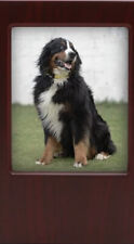 Near & Dear Pet Memorials Mdf Pet Photo Cremation Urn Cherry Finish