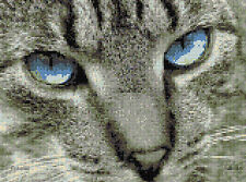 Ragdoll Cats Eyes Counted Cross Stitch Kit ,Animals/Insects,Designs In Thread