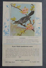 1920's White Baking American Catbird with bulletin