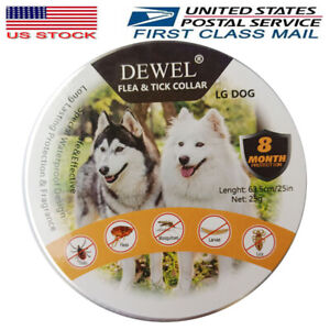 Dewel Cheaper than Seresto!  Flea and Tick Collar for Large Dog 8 Months