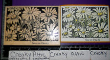 FIELD OF DAISIES FLOWERS RUBBER STAMP SANDI MILLER F-3