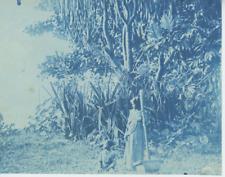Madagascar, Scènes et types, cca. 1895 Vintage print. cyanotype  12x16  Ci