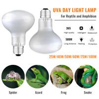 220V Reptile Light Bulb UV Heat Lamps Tortoise Lizard Calcium Supplement UVB UVA