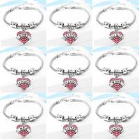 European Charm Bracelets Silver Chain Bangle Fit DIY 925 sterling Beads Pendant