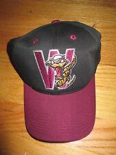 WISCONSIN TIMBER RATTLERS Minor League Baseball (Adj Snap Back) Cap w/ Tags