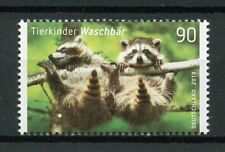 Germany 2019 MNH Baby Animals Raccoons 1v Set Wild Animals Stamps