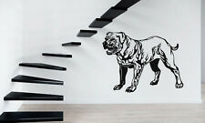 Wall Sticker Vinyl Decal Animals Dog Bulldog  Pitbull Aggressive Predator  z345