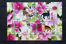 Katzen 20 3 cats Chats Tiere animals pets Fauna Block KB sheet gestempelt