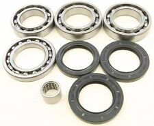 NEW ALL BALLS - 25-2101 - Differential Bearing and Seal Kit ARTIC CAT WILD CAT