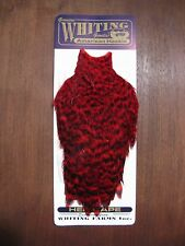 Fly Tying Whiting American Hen Cape Grizzly dyed Red #C