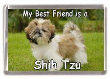 """Shih Tzu Dog Fridge Magnet """"My Best Friend is a Shih Tzu"""" by Starprint"""