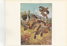 "1972 Vintage HUNTING /""PORTRAIT OF JOHN J AUDUBON 1840/"" RIFLE Color Lithograph"